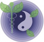 Holistic Care Solutions
